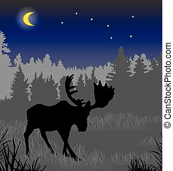 Elk in the night forest.eps - Elk in the night forest. There...