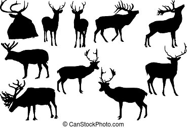 Elk Silhouette vector illustration