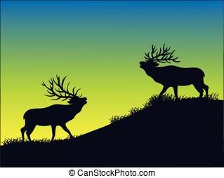 elk silhouette - vector, silhouette of two bull elk at dawn