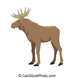 Elk vector illustration.