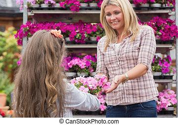 elle, petite fille, mère, donner, fleurir pot