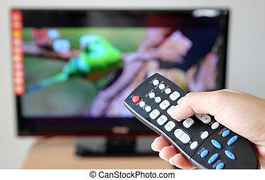 ellenőrzés, televízió, felé, távoli, hegyezés, tv, kéz