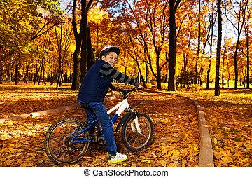 elnyomott bicikli, alatt, a, ősz, liget