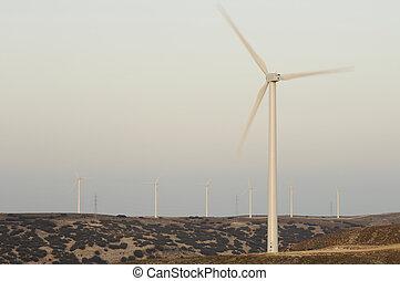 eloicos, grupp, av, slingra turbiner, hos, solnedgång