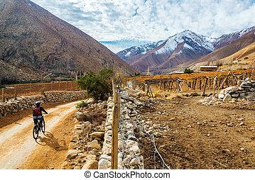 elqui, vallée, montagne faisant vélo