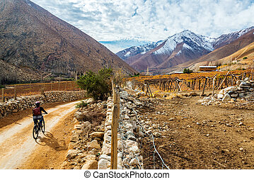 Elqui Valley Mountain Biking - Young woman mountain biking...