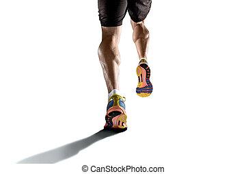 elszakadt, sport, atlétikai, combok, fiatal, elszigetelt, futás, izom, háttér, fehér, erős, borjú, ember