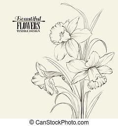 elszigetelt, bekötött, háttér, nárcisz, white virág