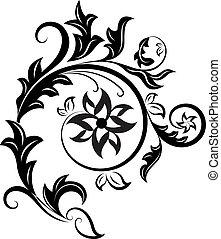 elszigetelt, elem, háttér., tervezés, virágos, fekete, fehér
