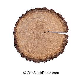 elvág, fa, elszigetelt, háttér, törzs, fehér