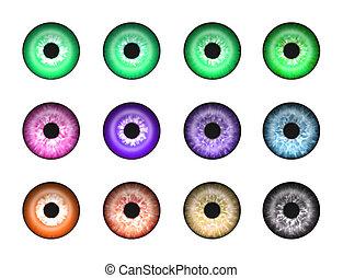elvont, 2, szemek