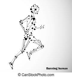 elvont, futás, ember