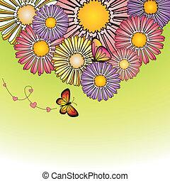 elvont, tavasz, színes, százszorszép