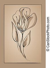 elvont, virág, képben látható, egy, nyersgyapjúszínű bezs, háttér., követés, festékez rajz