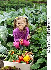 em, a, kitchen-garden