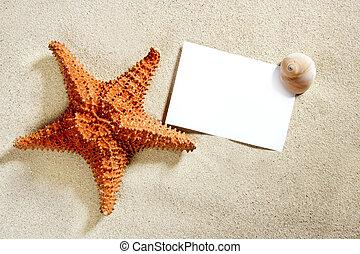 em branco, papel, areia praia, starfish, conchas, verão