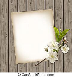 em branco, papel, com, florescer, cereja, ramo