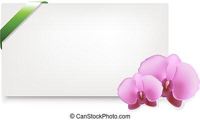 em branco, tag presente, com, orquídeas