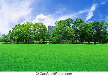 em, cidade, parques, gramados