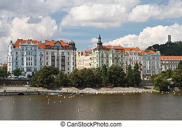 Embankment Prague district Smíchov, Swans on the Vltava...