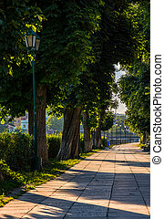 embankment with lantern at sunrise - lantern among chestnut...
