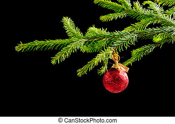 ,embellishment cristmas, - green branches of the pine, ...