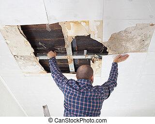 ember, összeomlás, ceiling., megjavítás