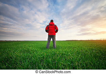 ember, alatt, zöld kaszáló