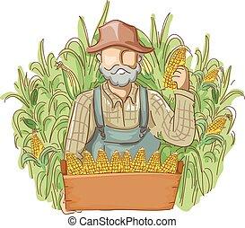 ember, cornfields, létrehoz, farmer