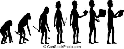 ember, fejlődés, majom, árnykép