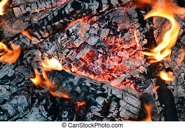 pieces of wood burning firewood in the evening