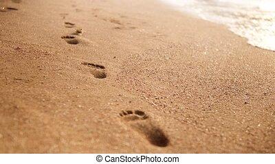emberi, lábnyomok, nedves, következő, homok, video, 4k,...