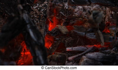 embers after a fire HD