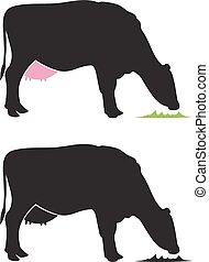 Emblem of a dairy cow munching grass