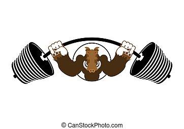 emblema, arrabbiato, sport, verro, warthog., squadra, selvatico, forte, barbell.