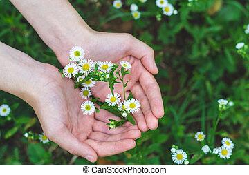 Embracing Wild Flowers