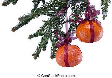 embrulhado, laranjas, penduradas, de, um, árvore natal