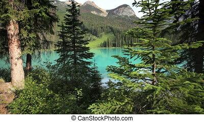 Emerald Lake - Pristine Emerald Lake, Yoho National Park,...