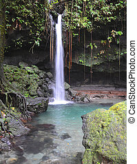 Emerald pool and waterfall in Dominica.