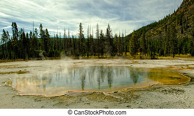 Emerald Pool in Yellowstone with Reflection of the Trees