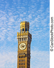Emerson Bromo-Seltzer Tower before the sunset in winter....