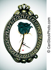 emo rose - a picture of a black rose on a vintage frame