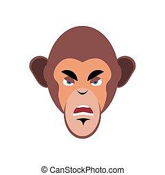 emoción, mono, emoji., isolated., enojado, chimpancé, cara, mono tití, agresivo
