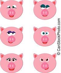 emoticon, cochon, collection, rigolote, caractères