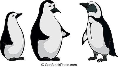 Emperor penguins - Antarctic black and white emperor...