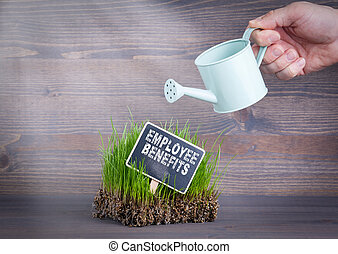 Employee Benefits concept. Fresh and green grass on wood background