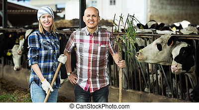 Employees working in livestock barn - Smiling adult farm ...