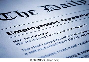 Employment Classifieds - Closeup of employment classified...