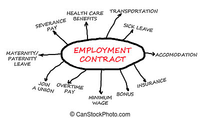 Employment contract flowchart isolated in a white background...