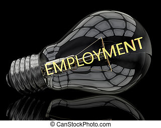 Employment - lightbulb on black background with text in it....